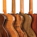 Wood Choice and Acoustic Guitar Tone