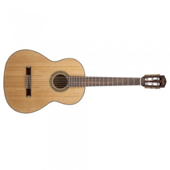 Five Great Tips For Using A Nylon String Guitar On Stage